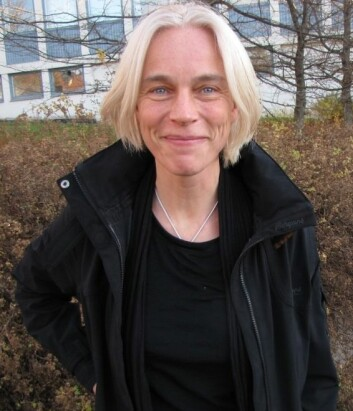 Ingrid Fuglestvedt tror man kan lære mye om steinalderkultur ved å studere bergkunst. (Foto: Ulla Gjeset Schjølberg)