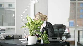 Mer effektiv med planter og pynt