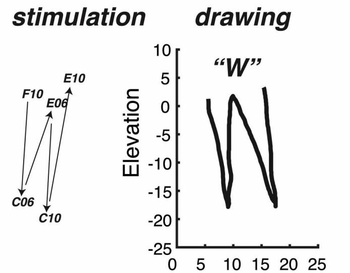 Til venstre retningen forskerne styrte strømmen i mellom elektrodene. Til høyre bokstaven w som deltakeren oppfattet.