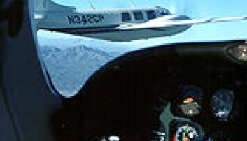 """""""De eldste flygerne var spesielt gode til å unngå kollisjoner i lufta"""""""