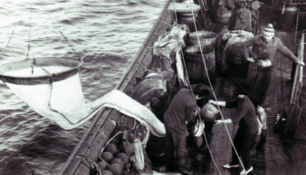 Sovjetisk torsketokt, PINRO. PINRO