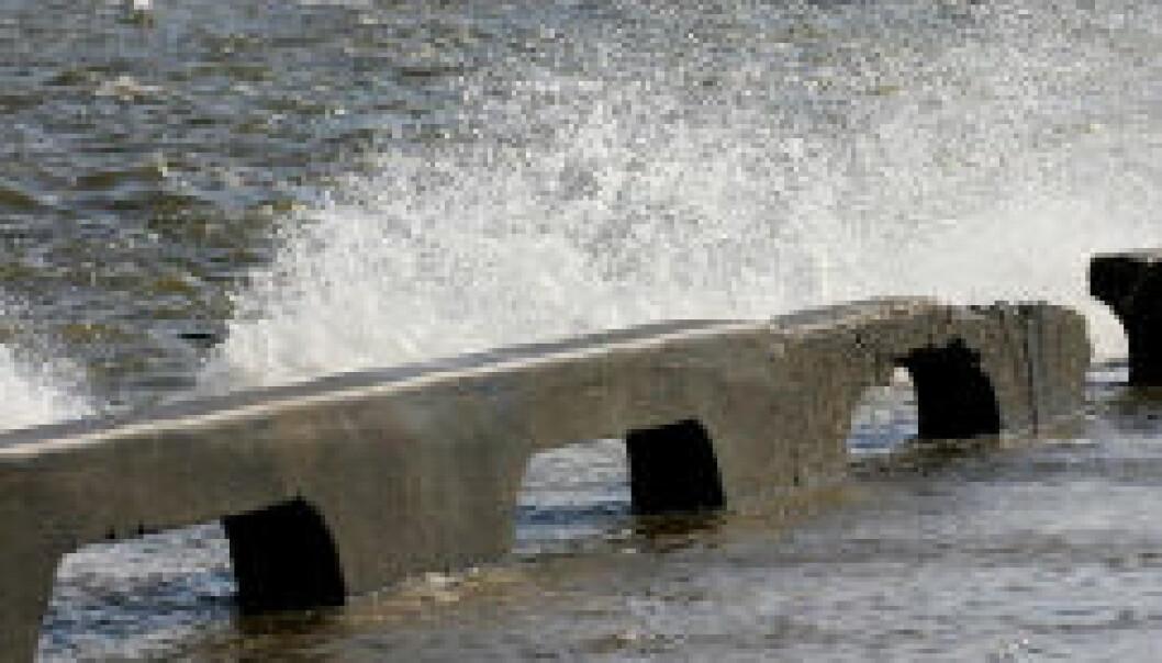 En Katrina-orkan vil slå til annethvert år