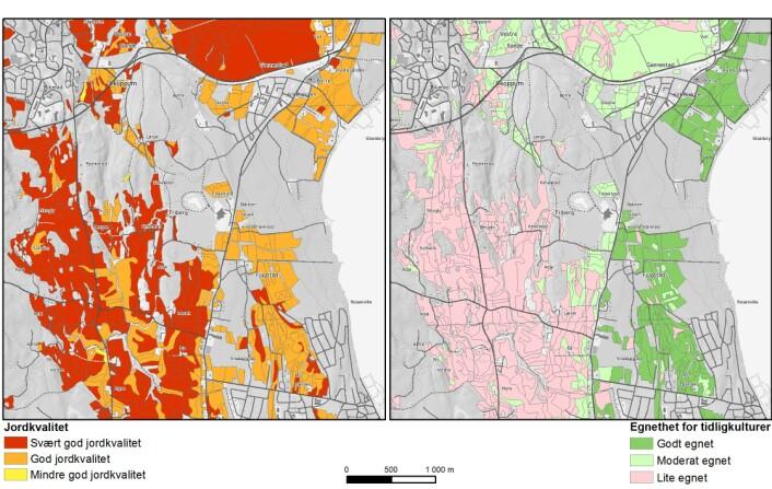 Utsnitt av de nye grønnsakskartene som viser Jordkvalitet og Egnethet for tidligkulturer for et område i Horten kommune. (Foto: (Kart: Skog og landskap))