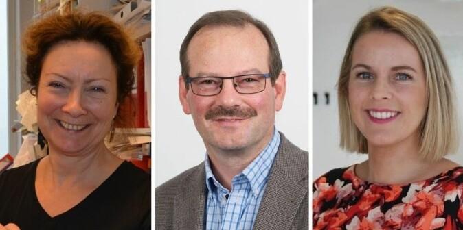 Digitale møter har kommet for å bli, men neppe like mye som under koronakrisen, tror Tone Bratteteig (t.v.), Knut Fostervold og Viktoria Stray.