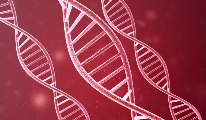 Celle-maskineriet som kopierer koronavirusets arvestoff har høy feilkrekvens som forårsaker mutasjoner, men mange av mutasjonene kan gjøre viruset mindre aggressivt.