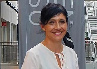 Førsteamanuensis Sabrina Sartori deltok nylig på et internasjonalt web-seminar for materialforskere med hele 800 deltakere.