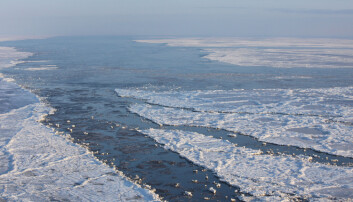 The ice of the Barents sea, Arctic ocean.
