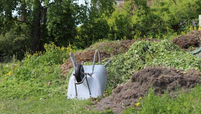 Det er lurt å ha en plass å samle rasket fra hagen.