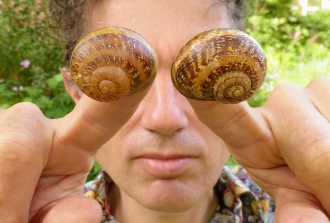 Hva er det som gjør at nen veldig få snegler har hus som snurrer feil vei? Angus Davison fikk folk i mange land til å lete etter slike sjeldne snegler.