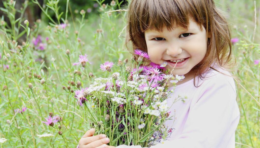 Barn og voksne kan i fremtiden kanskje helbredes for astma og allergi med gode probiotiske bakterier, eller bare en bedre bakteriebalanse i lungene. Colourbox