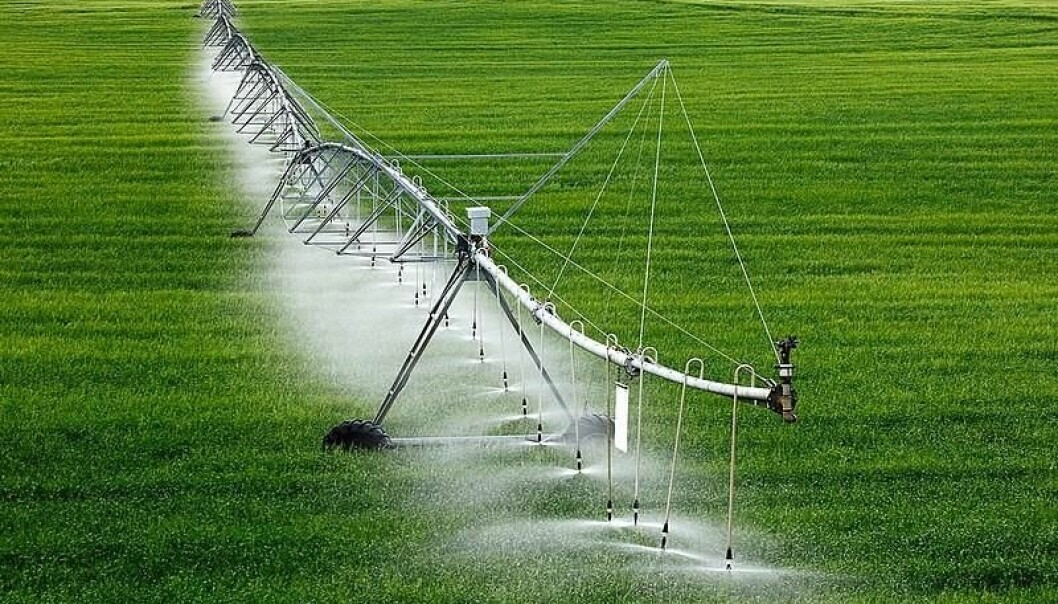 """""""We are downplaying the potential environmental impact of irrigated agriculture"""", says Arnald Puy who has just published his findings in Geophysical Research Letters with his research-fellows Andrea Saltelli (University of Bergen) and Samuele Lo Piano (University of Reading)."""