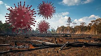 Risikoen for pandemier kan økes av klimaendringer og naturødeleggelser, ifølge danske forskere