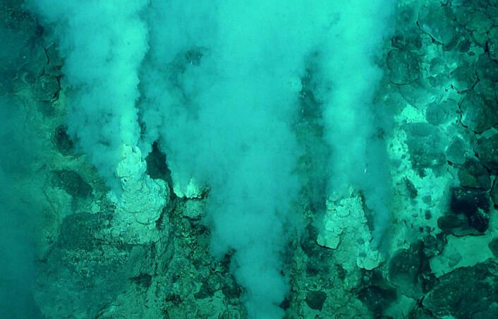 Hydrotermale skorsteiner, avleirede mineralrør rundt utslippene av mineralrikt varmt vann fra under havbunnen. Slike skorsteiner kan danne naturlige brenselceller og sette opp elektriske spenninger på samme måte som i stoffskiftet til levende celler. (Foto: U.S. National Oceanic and Atmospheric Administration)