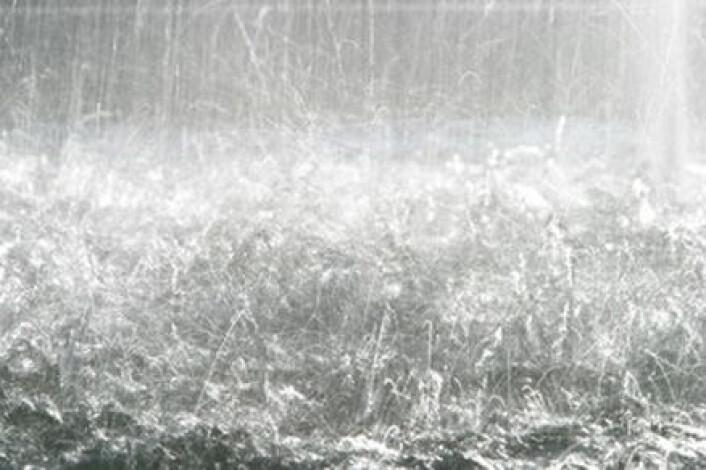 """""""Den som lar seg forvirre av klimaet idag, ville blitt gal av de kaotiske klimatilstandene som hersket for bare et par århundrer siden. Perioden fra tidlig 1300-tall og fram til slutten av 1800-tallet blir kalt den lille istid."""""""