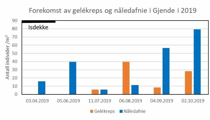 Forekomst av gelékreps og nåledafnie i de frie vannmassene i Gjende i 2019.