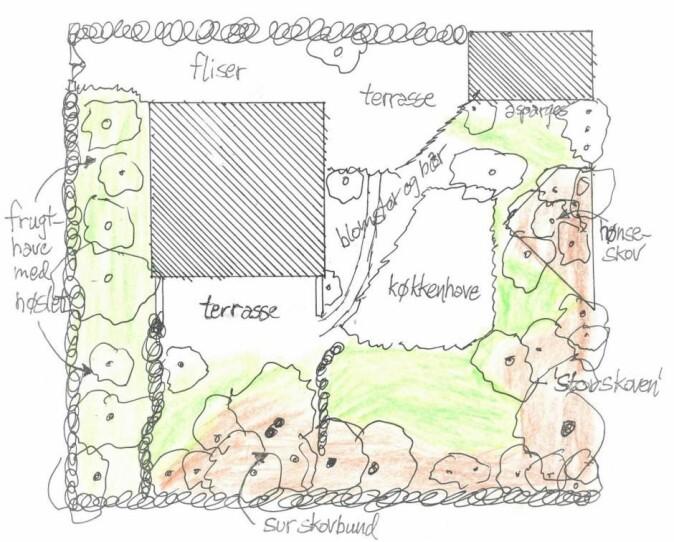 Kart over Per Gundersens hage. I frukthagen slår han bare gresset en gang i året med en ljå.