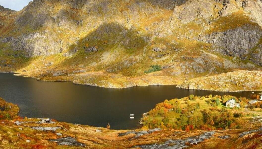 Det har bodd mennesker i de nordlige delene av Norge i tusenvis av år. Fra de siste 7300 årene finner forskerne avføringsspor etter dem i Lofoten. Simo Räsänen/Wikimedia Creative Commons