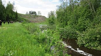 Vann i bekker kan bli dårligere av nydyrket skog og mark