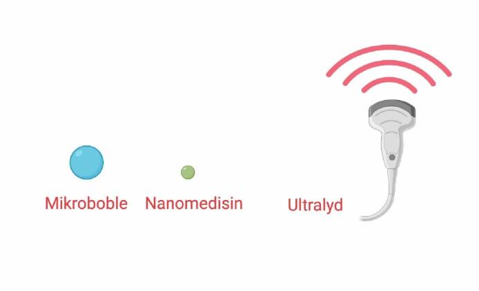 Ultralyd og mikrobobler for mer effektiv kreftbehandling