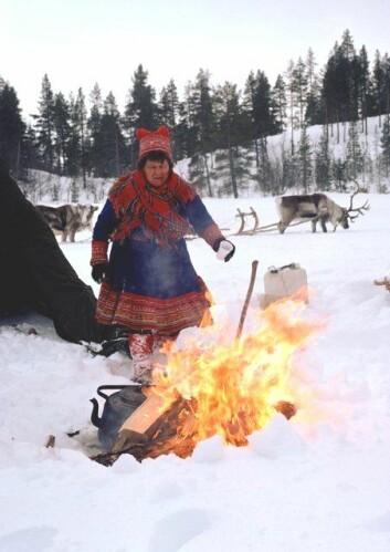 Samisk snakkes oftere ute i naturen. (Illustrasjonsfoto: www.colourbox.no)
