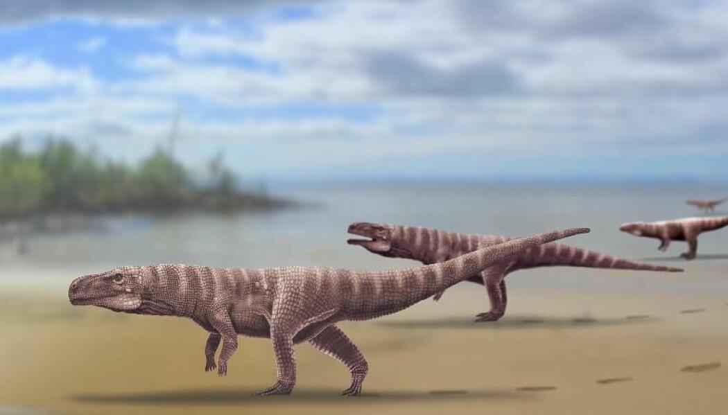 For 120 millioner år siden levde tobeinte krokodiller langs kysten av det som i dag er Sør-Korea, ifølge ny forskning.