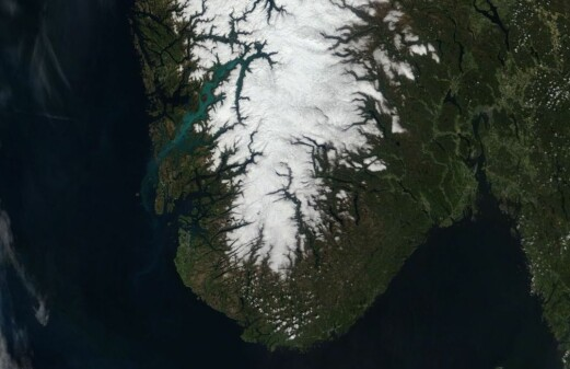 Why the fjords turn green