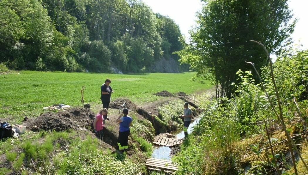 Forsker og studenter fra Kulturhistorisk museum har gravd i den gamle myra på Jortveit gård i tre sesonger. Rundt 125 centimeter nede under åkeren ligger et lag av bein fra makrellstørje.
