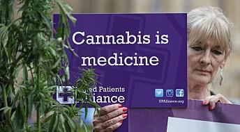 Forsker: – Det er snart for sent å finne ut om cannabis virker som medisin