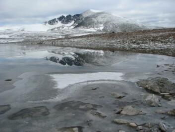 Høyalpint vann ved Snøhetta. (Foto: Markus Lindholm/NIVA)