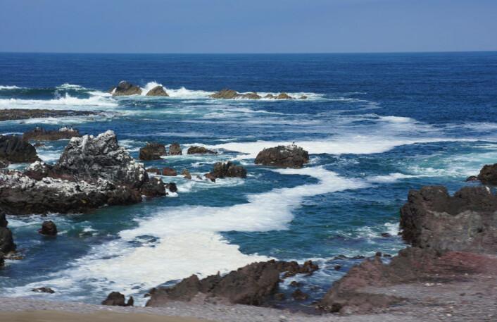 Klipper ved stillehavskysten utenfor Antofagasta. (Foto: Arnfinn Christensen)
