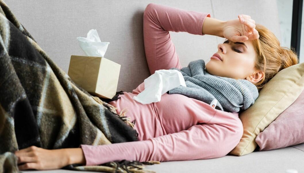Forskere fra Universitet i Oslo, Veterinærinstituttet og kinesiske universiteter undersøker nå om covid-19 bli en ny sesongmessig sykdom.