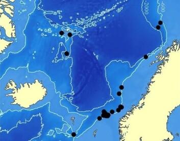 Foreløpig kjente funn av Scalibregma hanseni i Norskehavet. (Foto: (Illustrasjon: Katrine Kongshavn/Universitetsmuseet i Bergen))