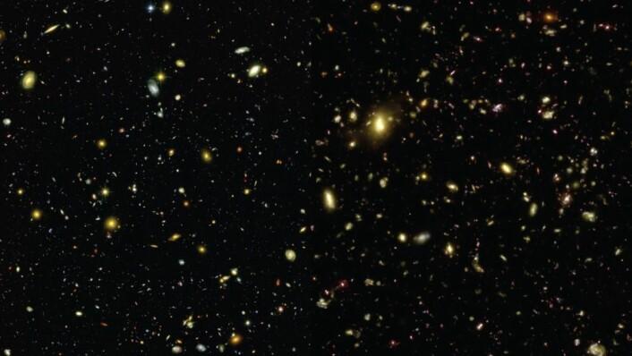 Venstre del av bildet viser universet som det faktisk ser ut sett gjennom Hubble eXtreme Deep Field, høyre side viser simuleringen. (Foto: Illustris Collaboration)