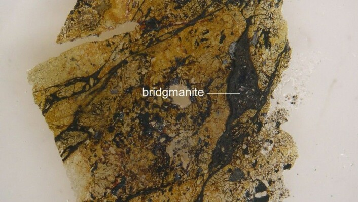 Bridgmanite finnes i store mengder mellom 670 og 2.900 kilometer under jordskorpa. (Foto: Chi Ma)