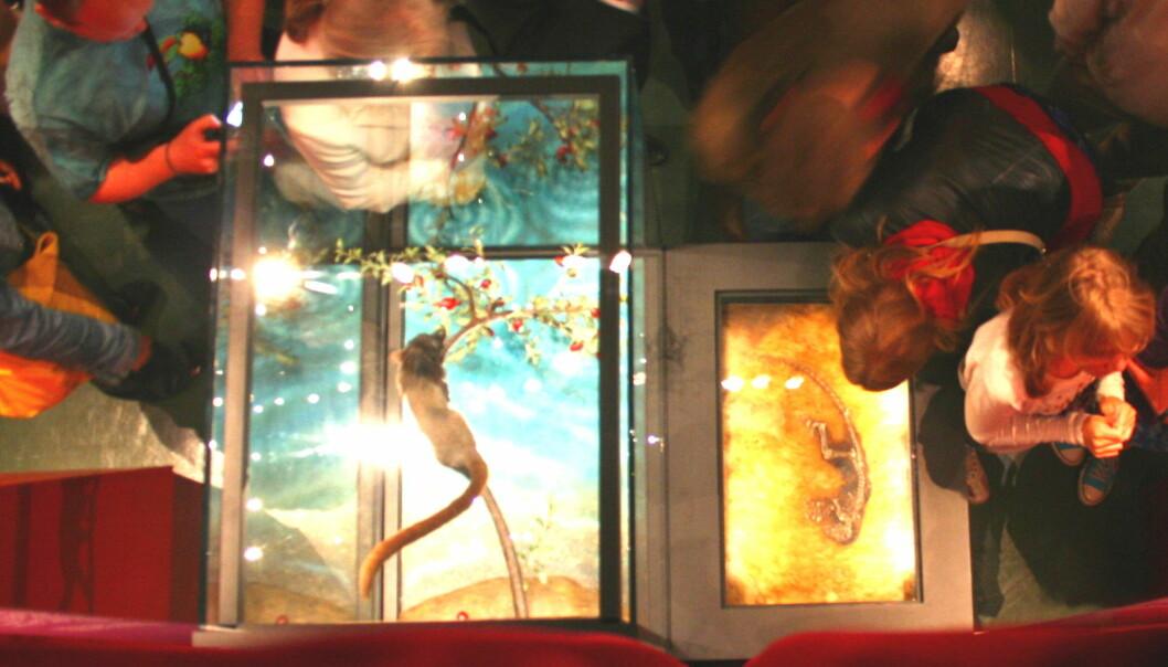 """""""NHM stilte ut Ida som en del av utstillingen """"Kan vi tilgi Darwin"""" i 2009."""""""