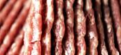 Helseskadelig elgkjøttdeig