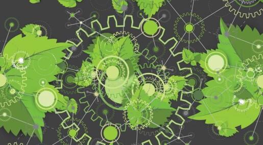Kunstig fotosyntese kan omdanne unyttig CO2 til nyttig maursyre