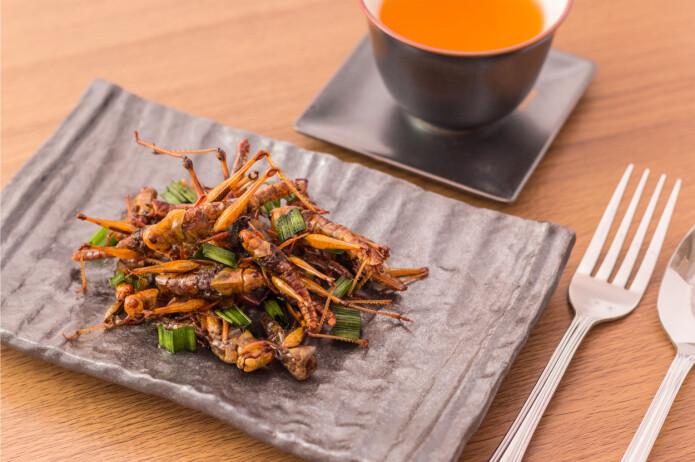 Ufordringene forbundet med å spise spindelvev er så store at det nok er mer opplagt å grille en gresshoppe, forteller en dansk forsker.