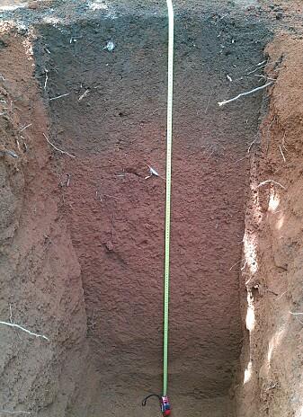 Forskerne tok prøver av jorda ned til 20 centimeter under bakken. Øverst er det et tydelig lag av svart jord.