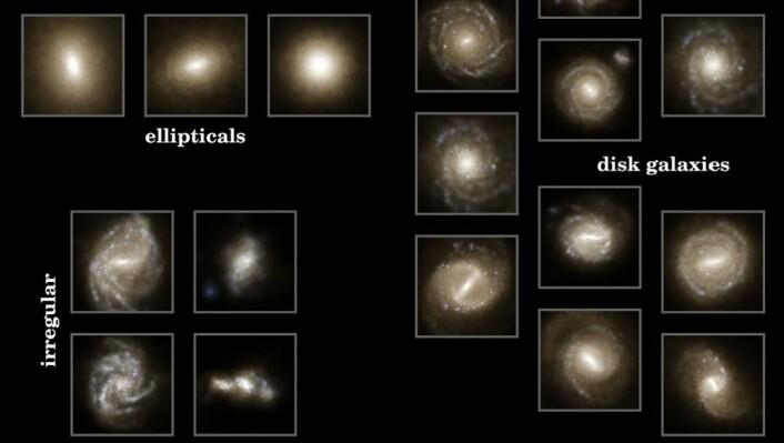 Stjernelysdistribusjon i simulert nåtid: Bildet viser at simuleringen kommer opp med et bredt utvalg galaksetyper. (Foto: Illustris Collaboration)