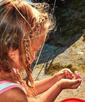 Finnes det et speilvendt sneglehus, blant alle sneglehusene på stranda?