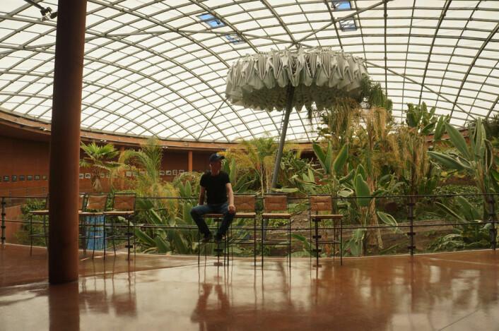 Artikkelforfatteren foran palmehagen i Residencia Paranal. (Foto: Arnfinn Christensen)