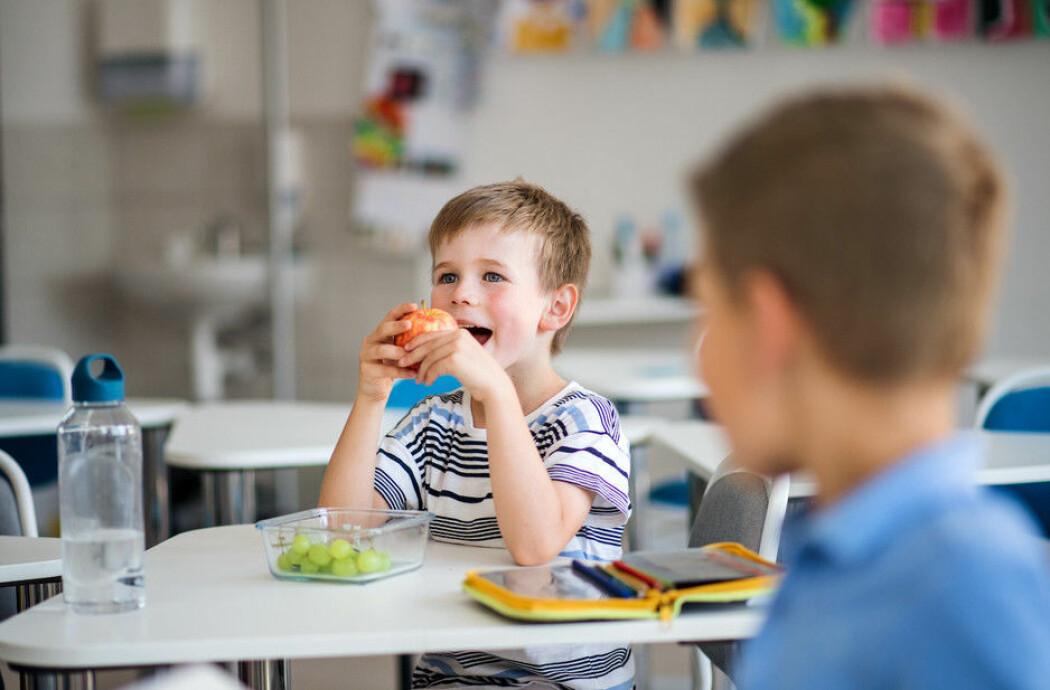 Tidligere forskning har vist at tiltak som gratis skolefrukt har god effekt, men hvor lenge varer effekten?