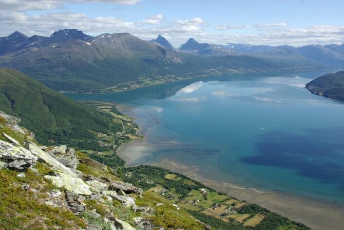 Fjordlandskap i Troms. Utsyn frå kartleggingsflate på Lavangstinden, sett inn over Balsfjorden. (Foto: Per K. Bjørklund/Skog og landskap)