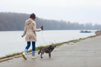 Den er kjent som mennesket sin besteven, og står alltid trufast ved vår side. Kan det vere vi vert meir påverka av hunden vår enn vi trur? (Foto: Photos.com)