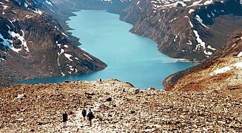 Falsk alarm om at fjellet er fullt av folk i sommer