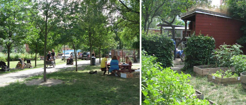 Parkområdet rundt en gammel institusjon er åpnet opp. Det har blitt et attraktivt grønt byrom, med dyr og ulike aktiviteter for folk i alle aldre (0-100 år).