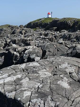 Den mørke bergarten pyroksenitt på Nordneset viser strukturer i svabergene som illustrerer prosesser dypt i jordskorpen.