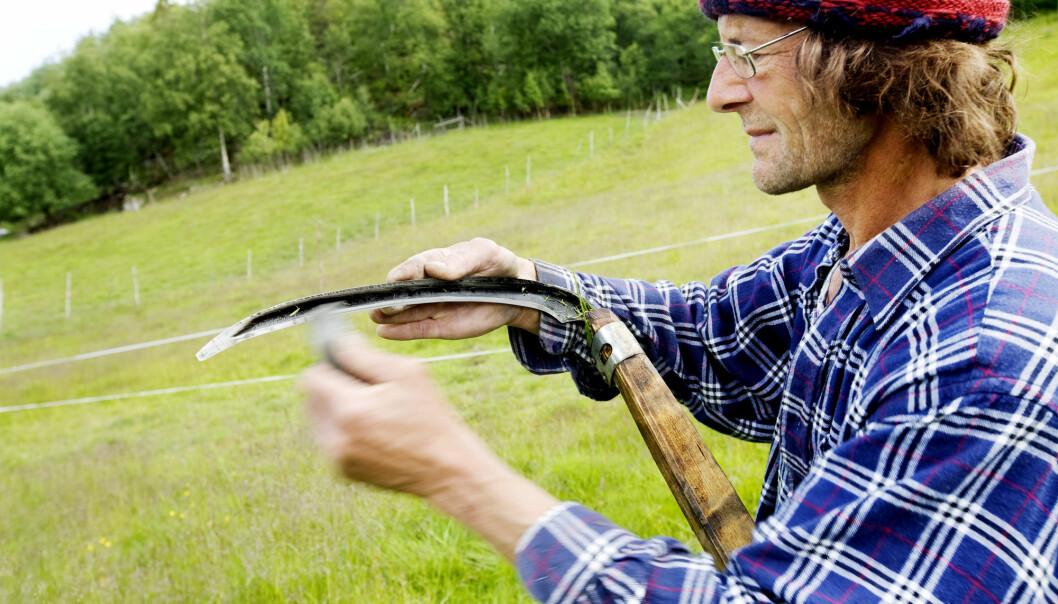 Bønder, fiskere og leger er blant dem som er mest fornøyd med jobben, viser levekårsundersøkelsen til SSB.