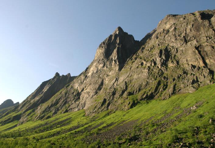 Dei mange skredprega liene langs fjellsidene gjev eit stort tilfang til den fruktbare Tromsnaturen. Frå Geitskarddalen, Ersfjorden i Berg kommune. (Foto: Per K. Bjørklund/Skog og landskap)
